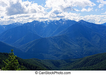 View from Deer Park Campground, Olympic National Park