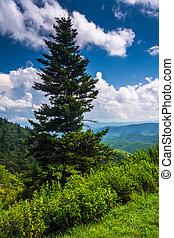 View from Devils Courthouse Overlook, on the Blue Ridge Parkway