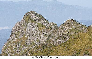 View from Doi Chiang Dao mountain, Chiang mai, Thailand.