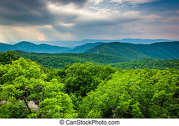 View from Loft Mountain, in Shenandoah National Park,...