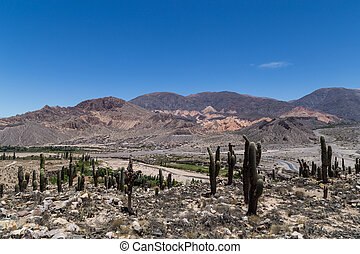 View from Pucara de Tilcara - View from the pre-inca ...
