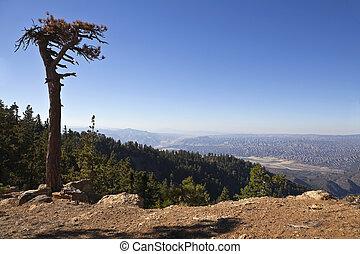 Lockwood Valley - View from Reyes Peak towards the Lockwood...