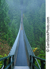 Capilano suspension bridge - View from start of Capilano...