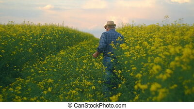 View from the back a man farmer in a hat walking with a ...