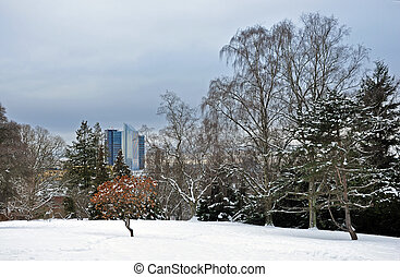 View from the Botanical Gardens in winter to the center of Oslo.