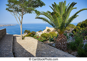 View from the castle of Santa Barbara on the sea and the city of Alicante. The ancient structures of the fortress, covered with tropical trees.