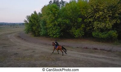 View from the height of woman riding a brown horse by gallop...