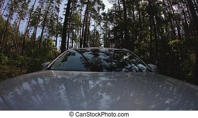 view from the hood of a car in motion.