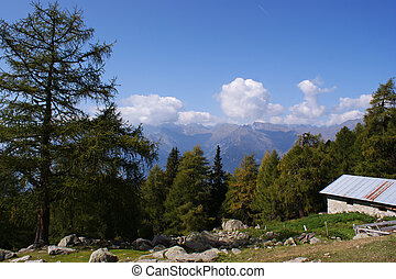 View from the Ifinger hut