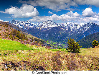 View from the pass Col de Vars. Alps, France.