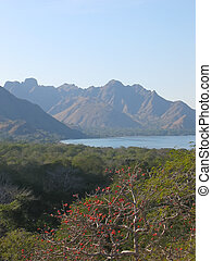 View from the Rinca island to the bay and the mountains, Komodo archipelago, Indonesia