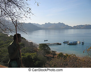View from the Rinca island to the bay and the sea, Komodo archipelago, Indonesia