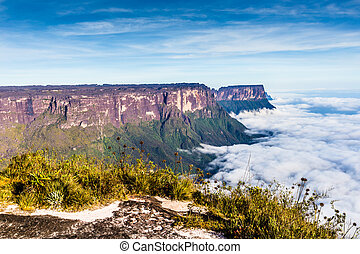 View from the Roraima tepui on Kukenan tepui at the fog - ...