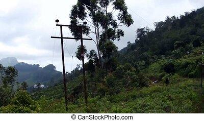 View from the train to Ella, Sri La
