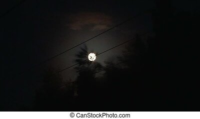 view from the train window late at night. full moon