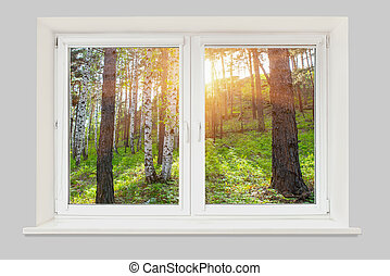 View from the window at sunset in the forest