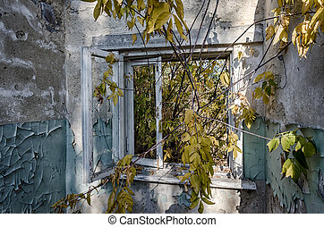 view from the window of an abandoned abandoned house in the village of Ukraine during the war