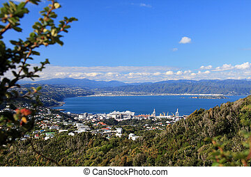 View From Wrights Hill, Wellington, New Zealand