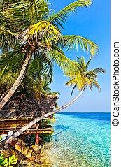 View in tropical hotel Ranveli, Maldives