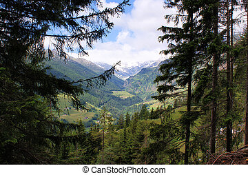 View into the Passeiertal
