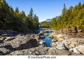 View Near Ellis Creek On Vancouver Island