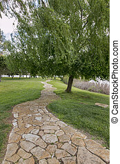 l stone path with trees and grass on a park