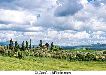 View of a farm near Pienza