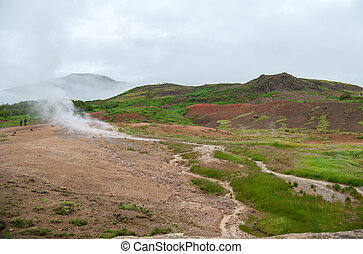 View of a Meadow with Steaming Hot Springs, Haukadalur...