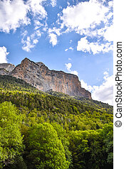 View of a moutain cliff in the summer