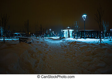 View of a Park in a Winter Nigt
