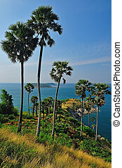 View of a Promthep cape. Phuket island, Thailand