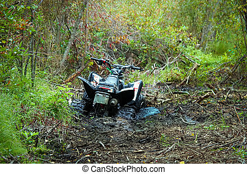 View of a quad stuck in the mud