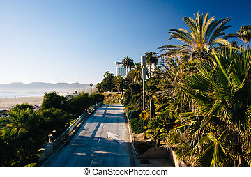 View of a road and palm trees in Santa Monica, California.