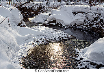 View of a small river in the forest running in the winter