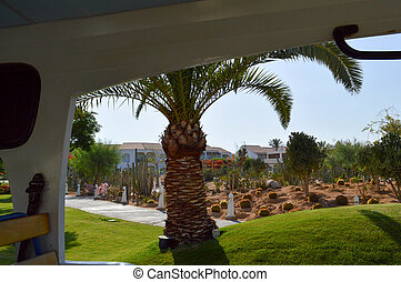View of a tropical resort with beautiful green palms, white villas with red tiled roofs and cactus from the window of a tourist bus on a trip.