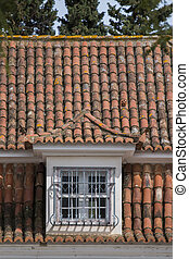 Portuguese red tile roof