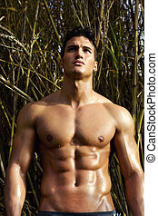 male model with muscles on the countryside - View of a very...