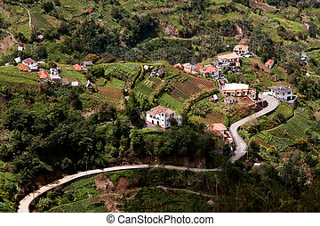 View of a winding road through the Madeira landscape