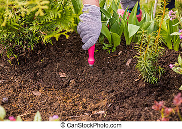view of a woman's hand hoeing weeds in the garden on a hot summer day, weeding grass, garden and cleaning work in the garden in the spring soil preparation. Hand Of Gardener With Tool Hoe