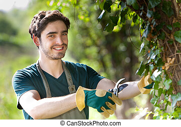 Young attractive gardener cutting leaves - View of a Young...