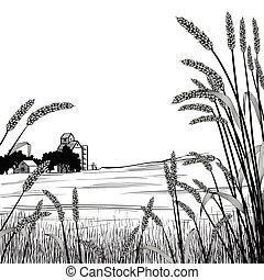 View of across a wheat field at a farm and silo with wheat grass strands framing the scene in the foreground