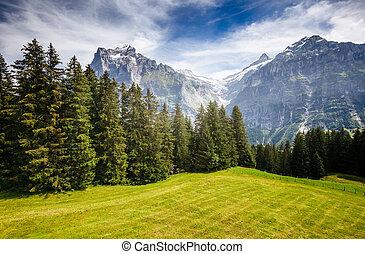 View of alpine Eiger village. Location place Swiss alps, Grindelwald, Europe.