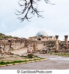 view of ancient Umayyad Palace at Amman Citadel - Travel to...