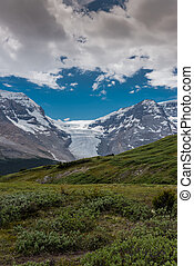 View of Athabasca Glacier from Wilcox Pass