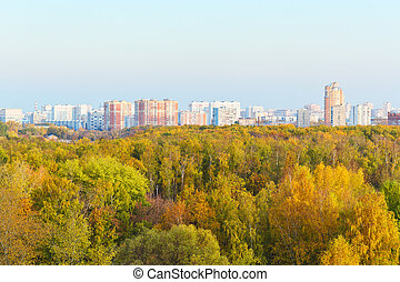 view of autumn trees and city