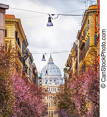 View of Basilica of St. Peter, Italy