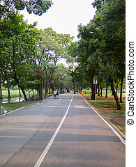 view of bike road in a park