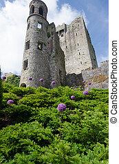 Blarney Castle - View of Blarney Castle, Ireland