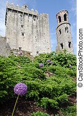 Blarney Castle - view of Blarney Castle