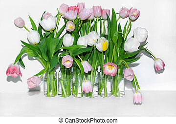 View of bouquets of tulips in glass jars on a white background.